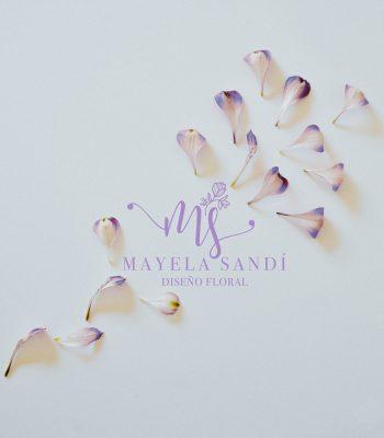 maye-2